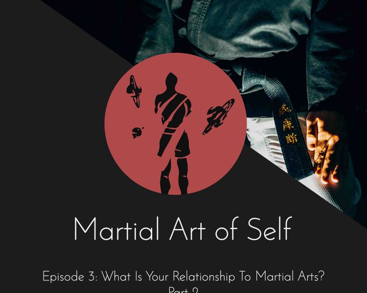 What is your relationship to Martial Arts? - Part 2 Martial Art of Self Martial Arts Podcast Episode 3