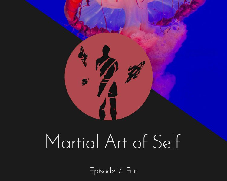 Fun in Martial Arts. Martial Art of Self Martial Arts Podcast Episode 7