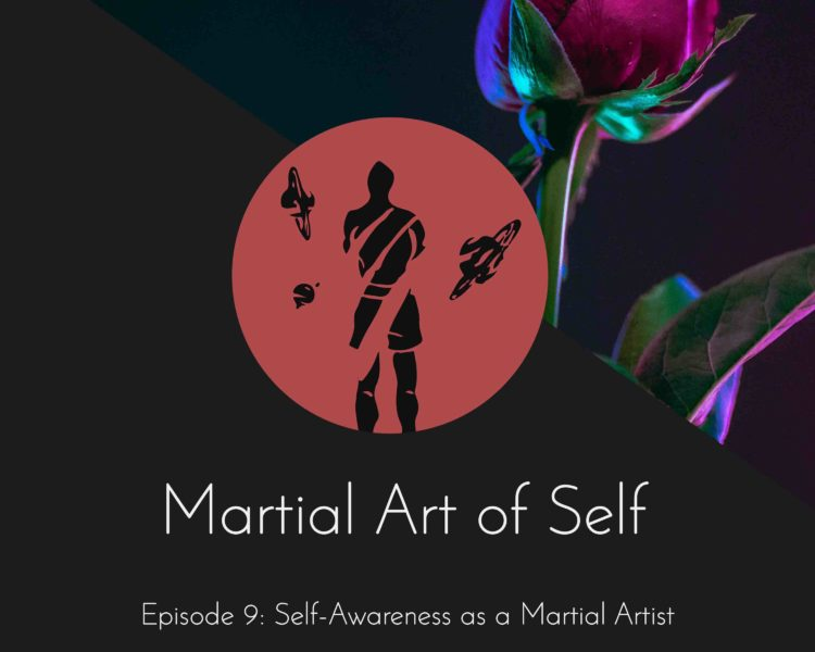 Self-Awareness as a martial artist. Martial Art of Self Martial Arts Podcast Episode 9