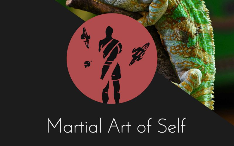 Being militant and lacking flexibility to adapt. Martial Art of Self Martial Arts Podcast Episode 16